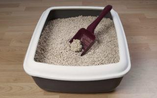 caixinha de areia